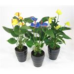 "Additional Images for 5"" Anthurium Painted in Ceramic  (Case 8)"
