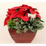 "Additional Images for 10""x10"" Christmas Vintage Square Pot   (Case: 2)"