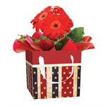 Additional Images for USA Blooming Gift Box USA104 (Case 15)