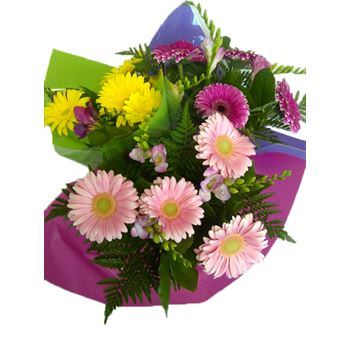 "Bouquet ""Everfresh"" Gerbera/Freesia Upgrade (Pack 6)"