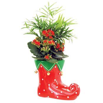 Indoor Garden Elf Boot Small  ELF201   (Case: 6)