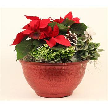 "8"" Christmas Bowl in Glitz Pot  (Case 2)"
