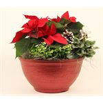 """Additional Images for 8"""" Christmas Bowl in Glitz Pot  (Case 2)"""