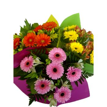 "Bouquet ""Everfresh"" Mini Gerbera/Alstro Upgrade (Pack 6)"
