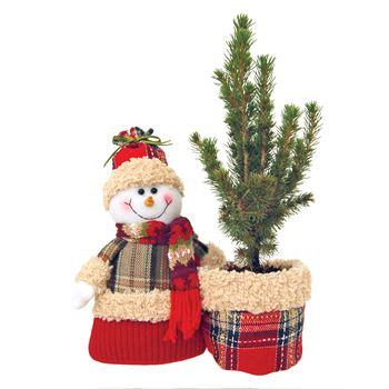 """Indoor Garden  Stuffies RED   """"Phyto"""" (Case 8)"""