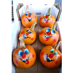 Additional Images for Decorative Dried Accents Painted Pie Pumpkins