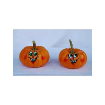 Decorative Dried Accents Painted Mini Pumpkins