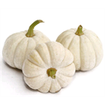 Additional Images for Decorative Dried Accents Baby Boo Pumpkins - White