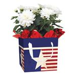 Additional Images for USA Blooming Gift Box (Case 15)