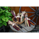 Additional Images for Decorative Dried Accents Indian Corn (12 bunches of 3)