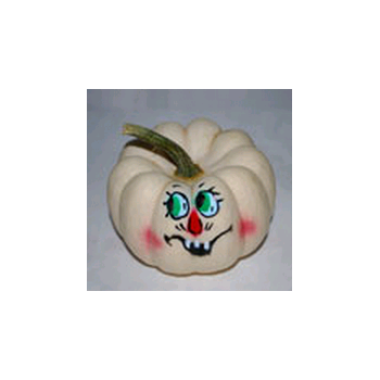 Decorative Dried Accents Painted Baby Boo Pumpkins