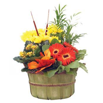 """Indoor Garden Fall Bushel 8.5""""    (Pack 4)"""