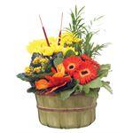 "Additional Images for Indoor Garden Fall Bushel 8.5""    (Pack 4)"