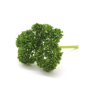 "4.5"" Herbs Organic Parsley Curled      (Case 15)"