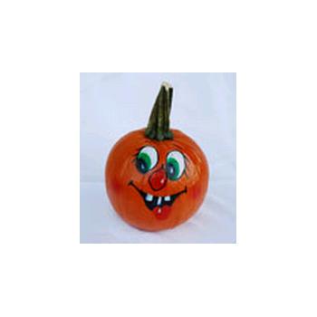 Decorative Dried Accents Painted Pie Pumpkins