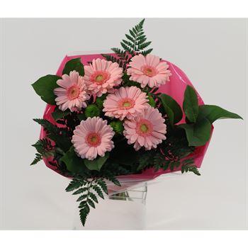 "Bouquet ""Everfresh"" Mini Gerbera/Pom Upgrade (Pack 5)"