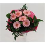 "Bouquet ""Everfresh"" Mini Gerbera/Pom Upgrade (Pack 5)"